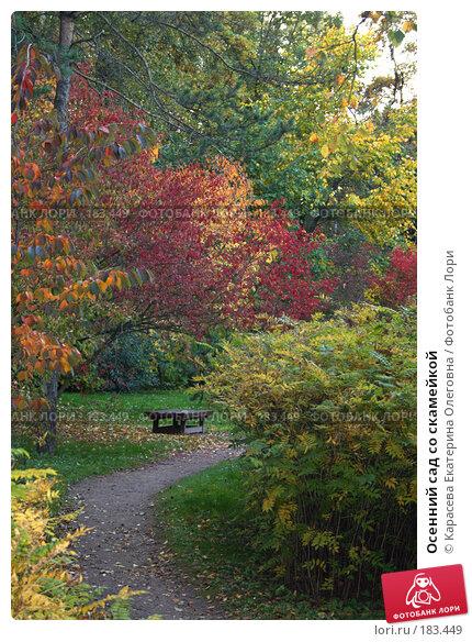 Купить «Осенний сад со скамейкой», фото № 183449, снято 26 сентября 2007 г. (c) Карасева Екатерина Олеговна / Фотобанк Лори