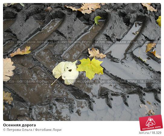 Осенняя дорога, фото № 18329, снято 27 октября 2006 г. (c) Петрова Ольга / Фотобанк Лори