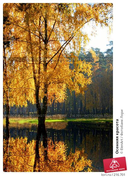 Купить «Осенняя красота», фото № 216701, снято 22 апреля 2018 г. (c) ElenArt / Фотобанк Лори