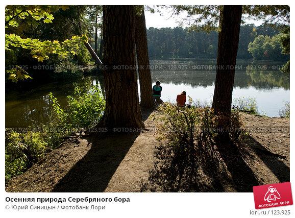 Осенняя природа Серебряного бора, фото № 123925, снято 22 сентября 2007 г. (c) Юрий Синицын / Фотобанк Лори