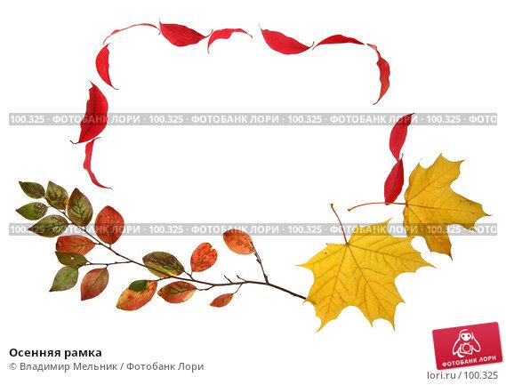 Осенняя рамка, фото № 100325, снято 27 сентября 2007 г. (c) Владимир Мельник / Фотобанк Лори