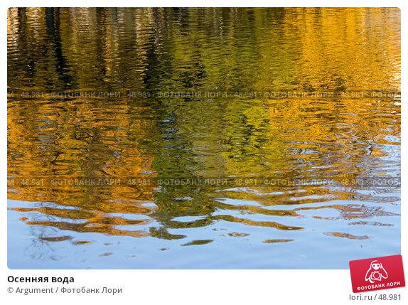 Купить «Осенняя вода», фото № 48981, снято 12 октября 2006 г. (c) Argument / Фотобанк Лори