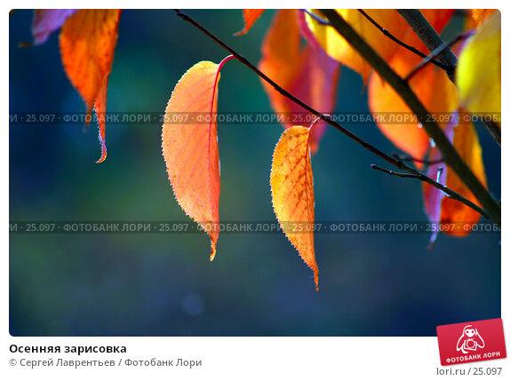 Купить «Осенняя зарисовка», фото № 25097, снято 24 ноября 2017 г. (c) Сергей Лаврентьев / Фотобанк Лори