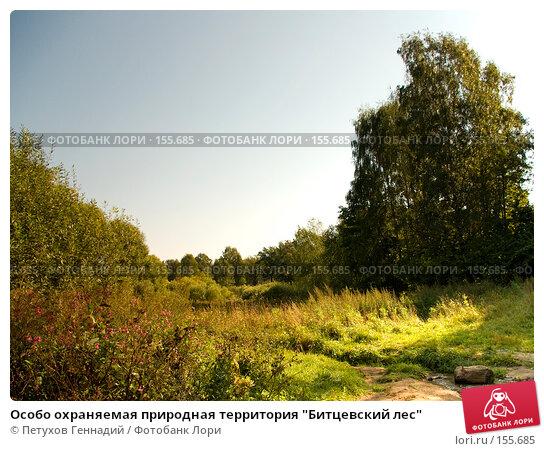 "Особо охраняемая природная территория ""Битцевский лес"", фото № 155685, снято 4 сентября 2007 г. (c) Петухов Геннадий / Фотобанк Лори"