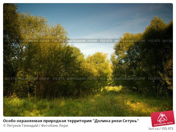 """Особо охраняемая природная территория """"Долина реки Сетунь"""", фото № 155973, снято 6 сентября 2007 г. (c) Петухов Геннадий / Фотобанк Лори"""