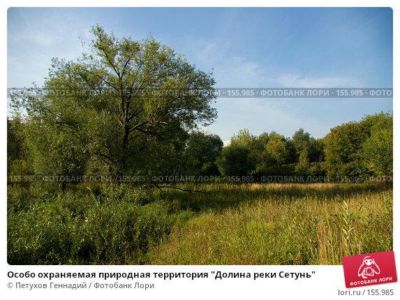 """Особо охраняемая природная территория """"Долина реки Сетунь"""", фото № 155985, снято 6 сентября 2007 г. (c) Петухов Геннадий / Фотобанк Лори"""