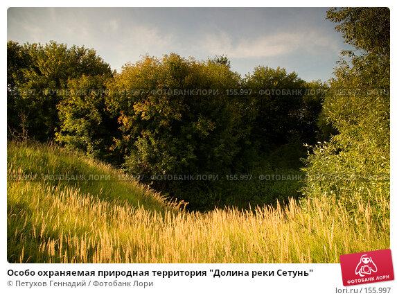 """Особо охраняемая природная территория """"Долина реки Сетунь"""", фото № 155997, снято 6 сентября 2007 г. (c) Петухов Геннадий / Фотобанк Лори"""