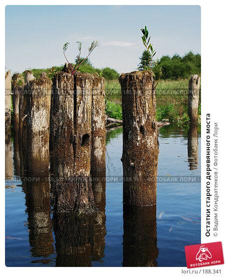 Остатки старого деревянного моста, фото № 188341, снято 21 июля 2017 г. (c) Вадим Кондратенков / Фотобанк Лори