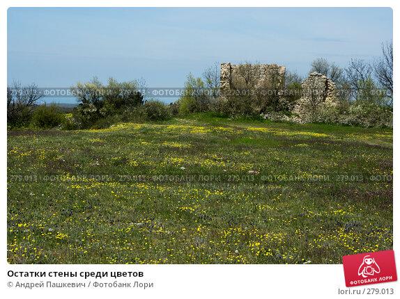 Остатки стены среди цветов, фото № 279013, снято 5 мая 2007 г. (c) Андрей Пашкевич / Фотобанк Лори
