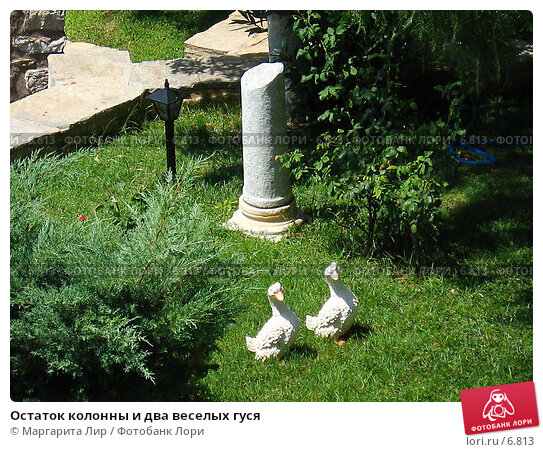 Купить «Остаток колонны и два веселых гуся», фото № 6813, снято 12 июля 2006 г. (c) Маргарита Лир / Фотобанк Лори