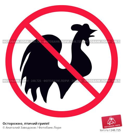 Купить «Осторожно, птичий грипп!», фото № 248725, снято 24 мая 2018 г. (c) Анатолий Заводсков / Фотобанк Лори