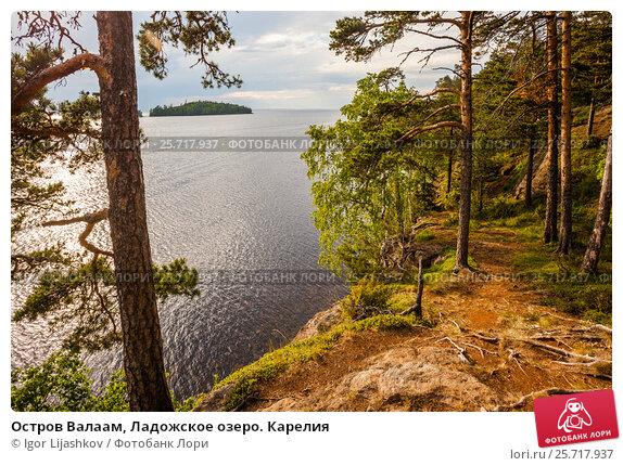 Остров Валаам, Ладожское озеро. Карелия. Стоковое фото, фотограф Igor Lijashkov / Фотобанк Лори