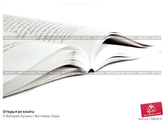 Купить «Открытая книга», фото № 104613, снято 20 апреля 2018 г. (c) Валерия Потапова / Фотобанк Лори