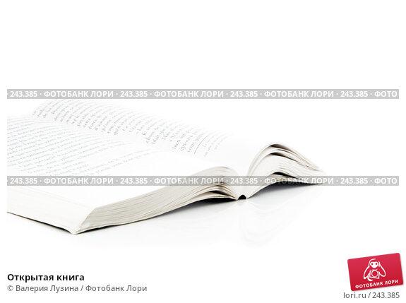Купить «Открытая книга», фото № 243385, снято 21 января 2008 г. (c) Валерия Потапова / Фотобанк Лори