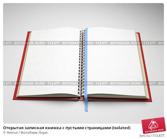 Открытая записная книжка с пустыми страницами (isolated), иллюстрация № 113877 (c) Hemul / Фотобанк Лори