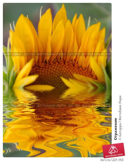 Отражение, фото № 221153, снято 28 июня 2007 г. (c) Goruppa / Фотобанк Лори