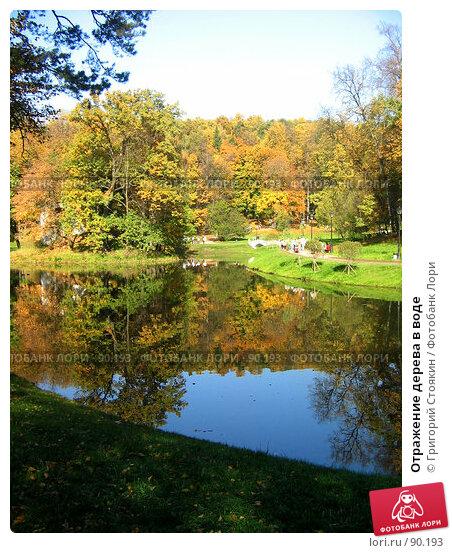 Купить «Отражение дерева в воде», фото № 90193, снято 30 сентября 2007 г. (c) Григорий Стоякин / Фотобанк Лори