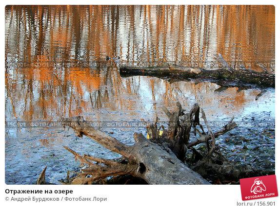 Отражение на озере, фото № 156901, снято 4 ноября 2005 г. (c) Андрей Бурдюков / Фотобанк Лори