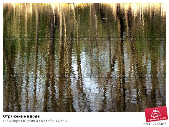 Отражение в воде, фото № 268045, снято 11 апреля 2008 г. (c) Виктория Щепкина / Фотобанк Лори
