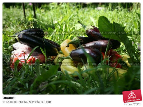 Овощи, фото № 7361, снято 25 апреля 2017 г. (c) Т.Кожевникова / Фотобанк Лори