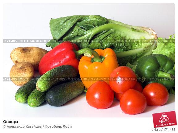 Овощи, фото № 171485, снято 1 июля 2007 г. (c) Александр Катайцев / Фотобанк Лори