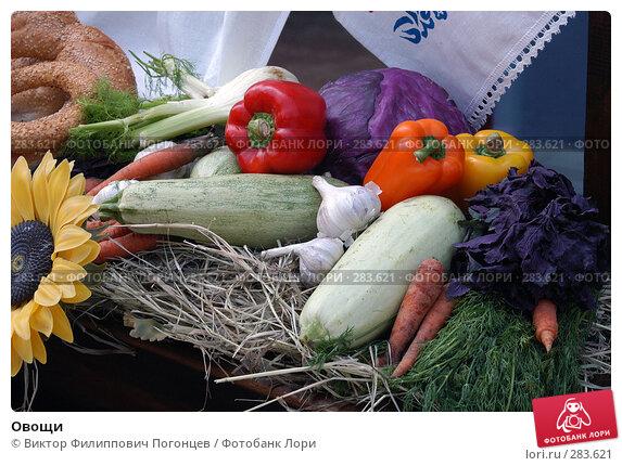 Овощи, фото № 283621, снято 29 июля 2004 г. (c) Виктор Филиппович Погонцев / Фотобанк Лори