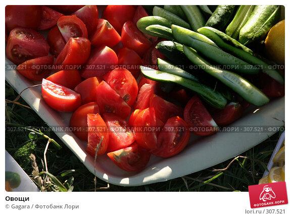 Овощи, фото № 307521, снято 8 июля 2006 г. (c) Gagara / Фотобанк Лори