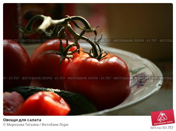 Овощи для салата, фото № 61757, снято 17 июня 2007 г. (c) Морозова Татьяна / Фотобанк Лори