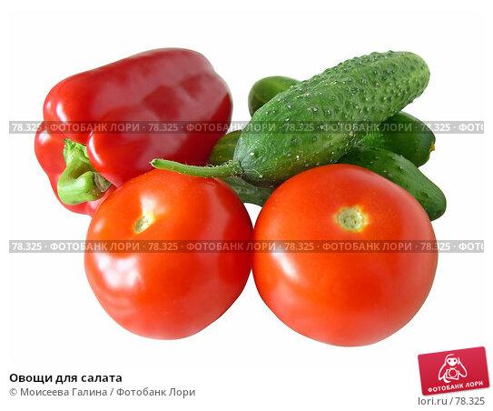 Овощи для салата, фото № 78325, снято 21 мая 2006 г. (c) Моисеева Галина / Фотобанк Лори