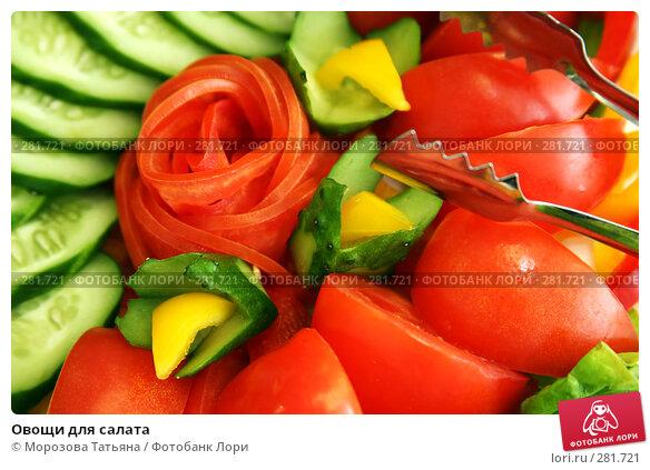 Овощи для салата, фото № 281721, снято 7 марта 2008 г. (c) Морозова Татьяна / Фотобанк Лори