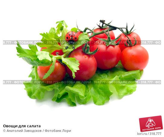 Овощи для салата, фото № 318777, снято 15 марта 2007 г. (c) Анатолий Заводсков / Фотобанк Лори