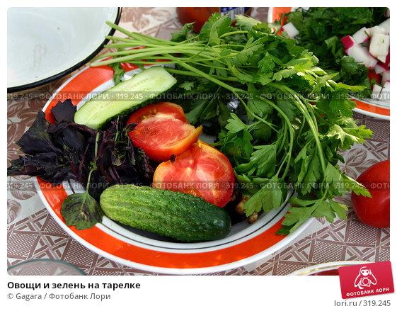 Овощи и зелень на тарелке, фото № 319245, снято 29 мая 2017 г. (c) Gagara / Фотобанк Лори