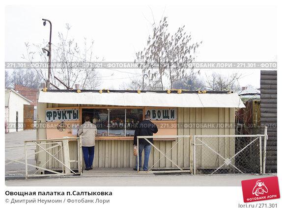 Овощная палатка п.Салтыковка, эксклюзивное фото № 271301, снято 10 апреля 2008 г. (c) Дмитрий Неумоин / Фотобанк Лори