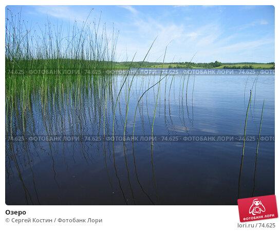 Купить «Озеро», фото № 74625, снято 4 июля 2006 г. (c) Сергей Костин / Фотобанк Лори