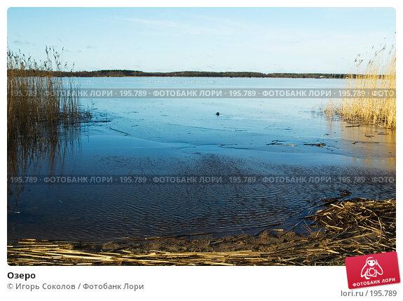Озеро, фото № 195789, снято 20 января 2008 г. (c) Игорь Соколов / Фотобанк Лори