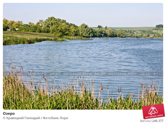 Озеро, фото № 248377, снято 1 июня 2006 г. (c) Кравецкий Геннадий / Фотобанк Лори