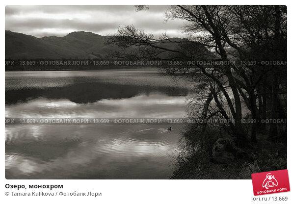Купить «Озеро, монохром», фото № 13669, снято 25 декабря 2005 г. (c) Tamara Kulikova / Фотобанк Лори