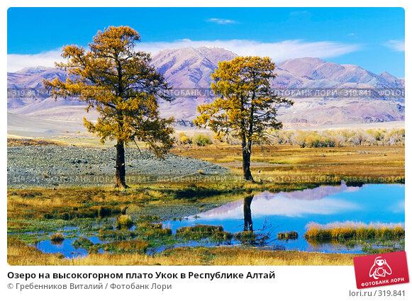 Озеро на высокогорном плато Укок в Республике Алтай, фото № 319841, снято 8 декабря 2016 г. (c) Гребенников Виталий / Фотобанк Лори