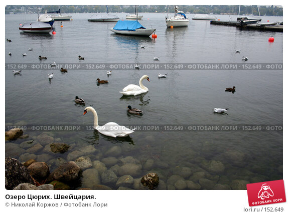 Купить «Озеро Цюрих. Швейцария.», фото № 152649, снято 15 сентября 2006 г. (c) Николай Коржов / Фотобанк Лори