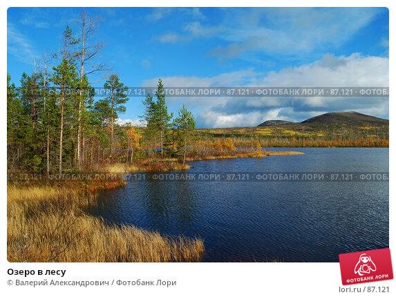 Озеро в лесу, фото № 87121, снято 29 апреля 2017 г. (c) Валерий Александрович / Фотобанк Лори
