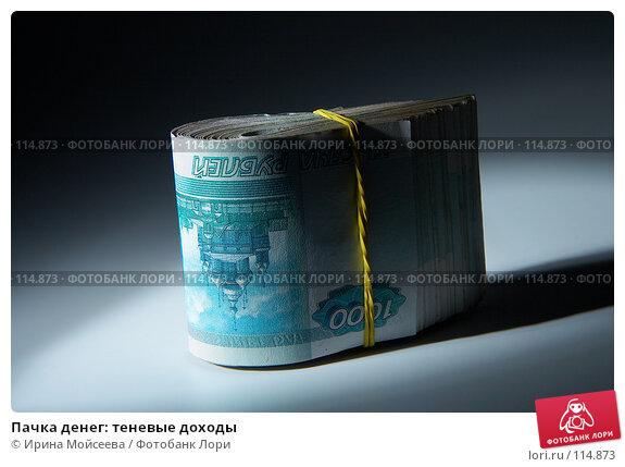 Пачка денег: теневые доходы, фото № 114873, снято 12 сентября 2007 г. (c) Ирина Мойсеева / Фотобанк Лори
