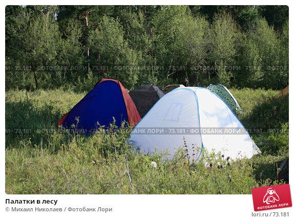 Палатки в лесу, фото № 73181, снято 4 августа 2007 г. (c) Михаил Николаев / Фотобанк Лори