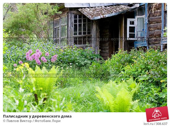 Палисадник у деревенского дома, фото № 308637, снято 10 июня 2006 г. (c) Павлов Виктор / Фотобанк Лори