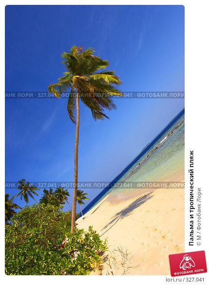 Купить «Пальма и тропический пляж», фото № 327041, снято 25 апреля 2018 г. (c) М / Фотобанк Лори