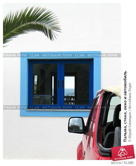 Пальма, стена, окно и автомобиль, фото № 12345, снято 28 сентября 2006 г. (c) Юрий Синицын / Фотобанк Лори