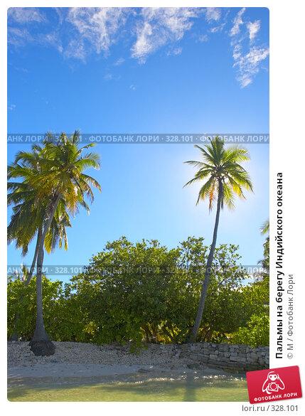 Пальмы на берегу Индийского океана, фото № 328101, снято 30 мая 2017 г. (c) Михаил / Фотобанк Лори