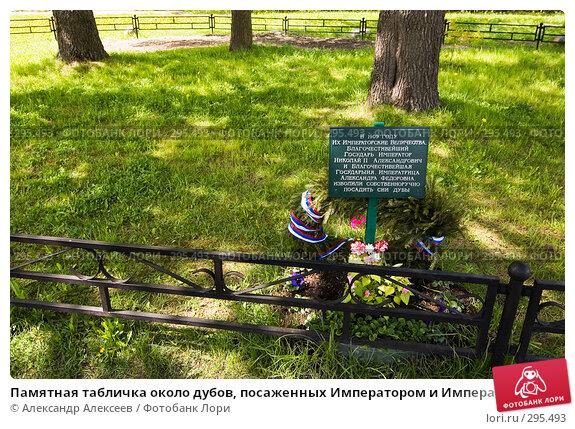 Купить «Памятная табличка около дубов, посаженных Императором и Императрицей в Царском Селе», эксклюзивное фото № 295493, снято 22 мая 2008 г. (c) Александр Алексеев / Фотобанк Лори