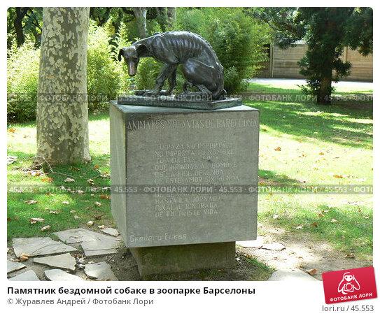 Памятник бездомной собаке в зоопарке Барселоны, фото № 45553, снято 21 сентября 2006 г. (c) Журавлев Андрей / Фотобанк Лори