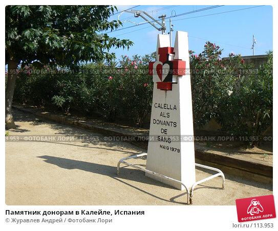 Купить «Памятник донорам в Калейле, Испания», эксклюзивное фото № 113953, снято 20 сентября 2006 г. (c) Журавлев Андрей / Фотобанк Лори