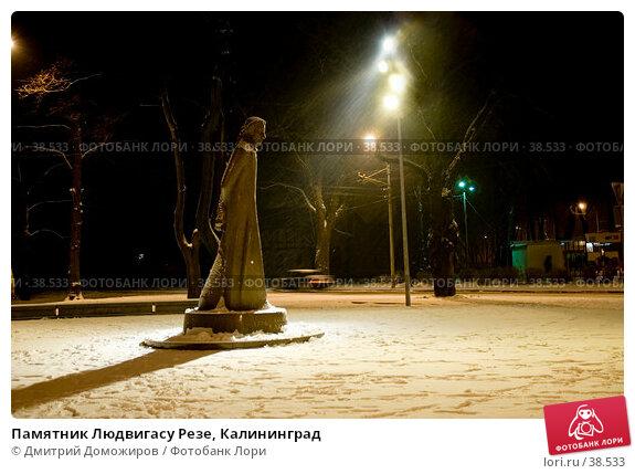 Памятник Людвигасу Резе, Калининград, фото № 38533, снято 26 февраля 2007 г. (c) Дмитрий Доможиров / Фотобанк Лори